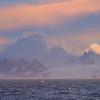 Land In Fog And Mist - Iceberg Alley , Hope Bay,  Antarctica Sound,  Antarctica