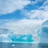 Glacial Blue Figures
