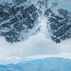 Avalanche Of Snow Coming Into Neko Harbor