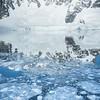 Glacier White Out