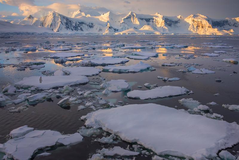 Iceberg Traffic Jam