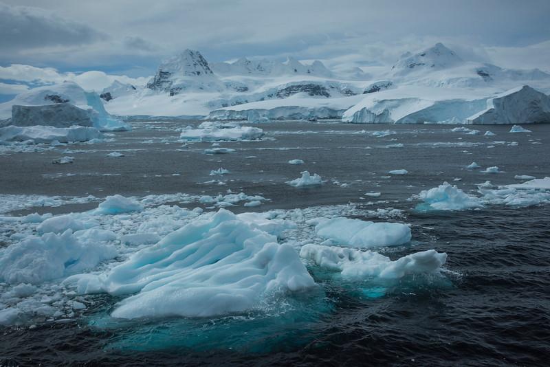 Broken Floating Bergs In The Bay