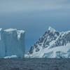 Floating Nature Wonders At Sea