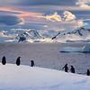 Penguins Even Enjoy Lenticular Clouds
