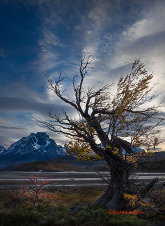 images from thef seventh day of Adamus photo tour In Torres Del Paine, Lago Grey