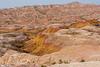 Conata Basin Overlook