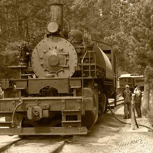 Steam Locomotive 110 in B\W