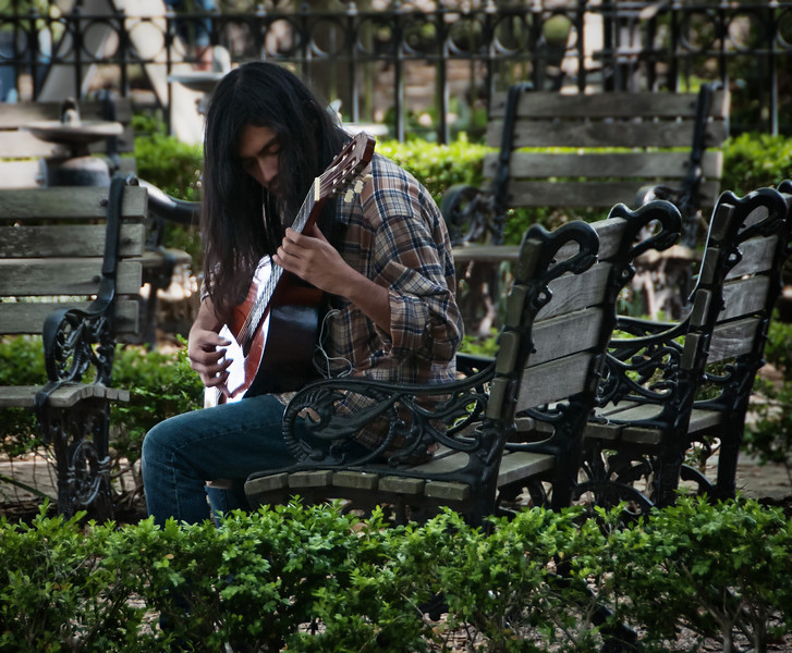 A local musician plays for the people in the park, Charleston, South Carolina.