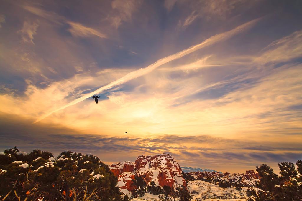 Ravens at sunrise  Arches National Park Utah