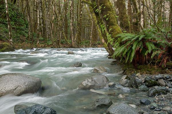 Raging Creek