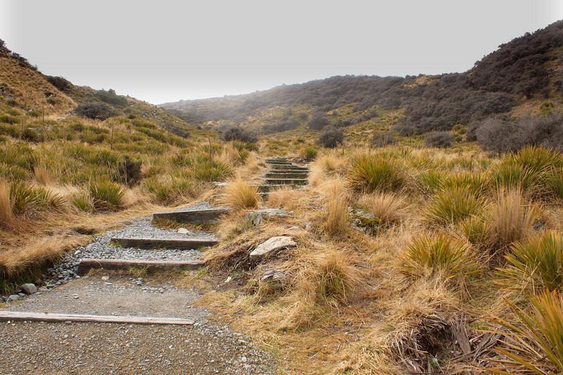 Tasman walk PS3