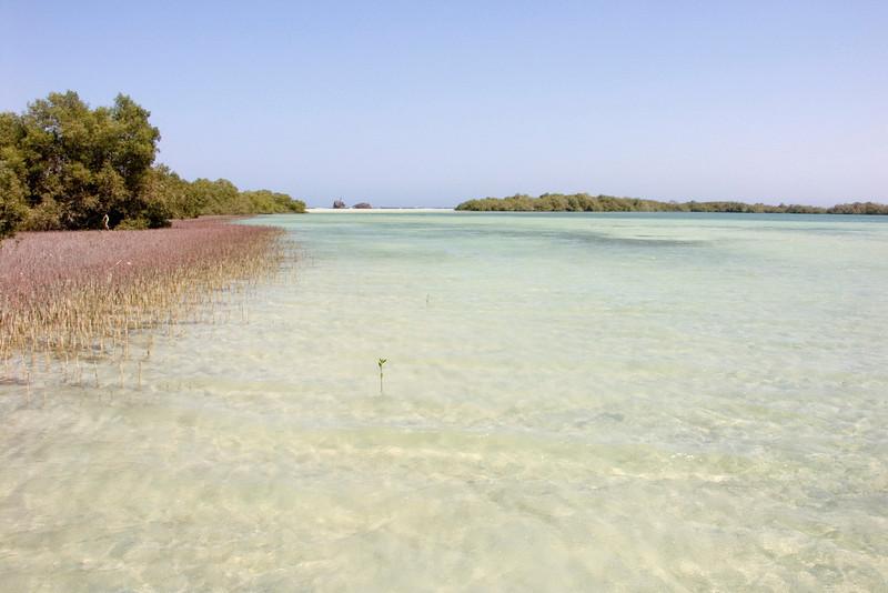 Nabq protected area, lagoon