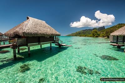 Tropical Retreats