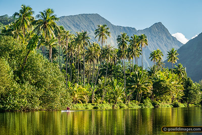 Canoe Coconut Cliff