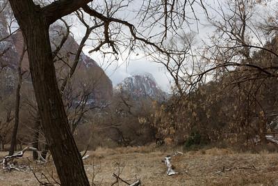 Zion National Park winter landscapes