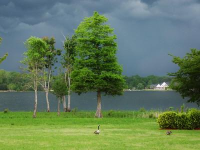 2011 April 28 Storm