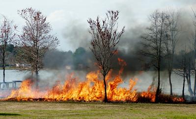 2012 Feb 29 Burn shore