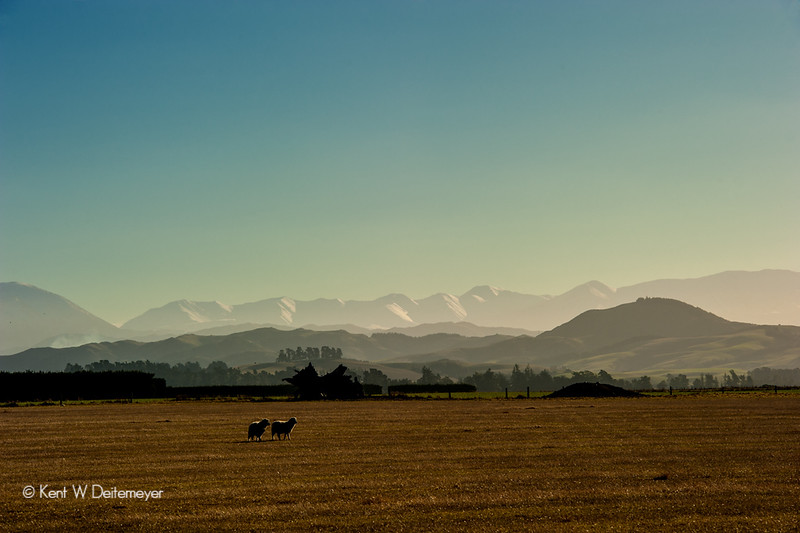 Canterbury Plains, the Malvern Hills and the Southern Alps. Canterbury, South Island near Darfield.