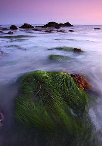 Mermaid Hair Santa Monica Mountains Southern California near Los Angeles  See more Southern California Seascapes here http://www.sierenphotography.com/gallery/9728890_WeRXK
