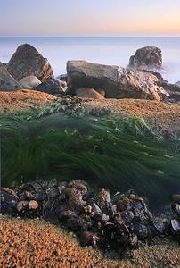 Wonder Tide Pool Santa Monica Mountains, California