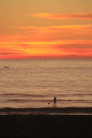 Stand up paddle boarder against an orange sunset in Manhattan Beach, CA