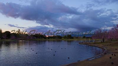 Sunset Lake Balboa
