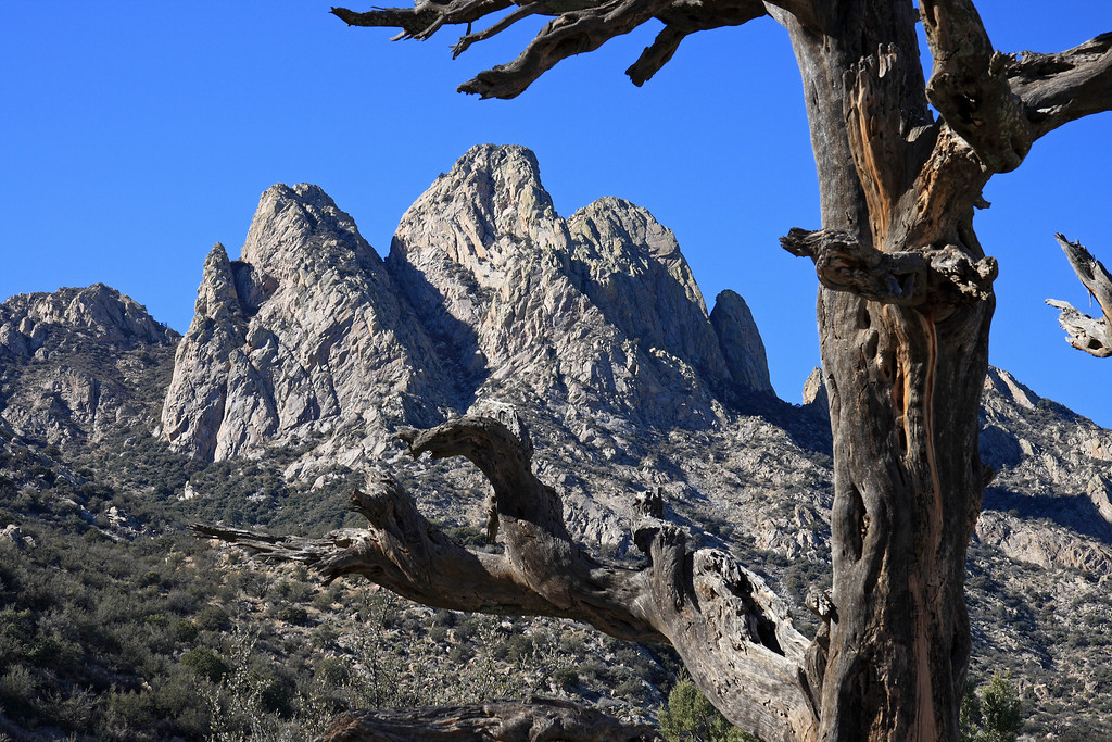 View of the Organ mountains outside Las Cruces