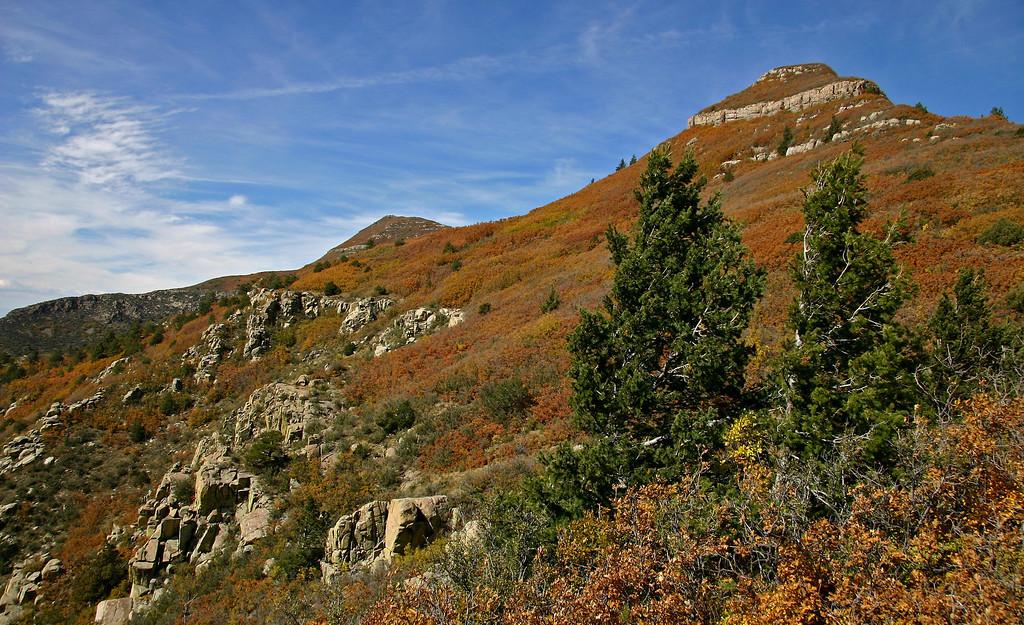 Manzano Mountains south of Albuquerque in October