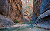 The Narrows, Virgin River, Zion National Park, Utah