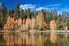 Aspen Reflection Lake, Duck Creek, Dixie National Forest, Utah