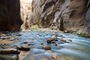 Virgin River Narrows, Zion National Park