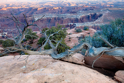 Dead Horse Point S.P.-2898