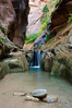 Orderville Creek, The Narrows, Zion National Park, Utah
