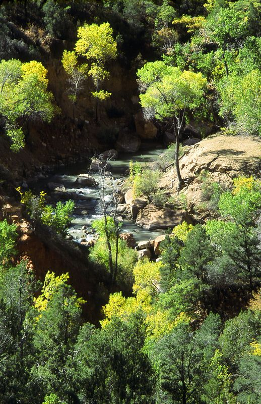 Virgin River, Autumn, Zion National Park, Utah