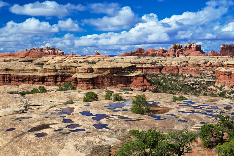 Needles District, Canyonlands National Park, Utah