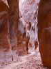 Wire Pass, Buckskin Gulch, Grand Staircase Escalnet National Monument, Utah