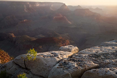 Sunrise at Grandview Point, Grand Canyon
