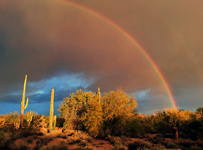 Rainbow over Arizona