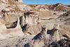 Bisti Badlands