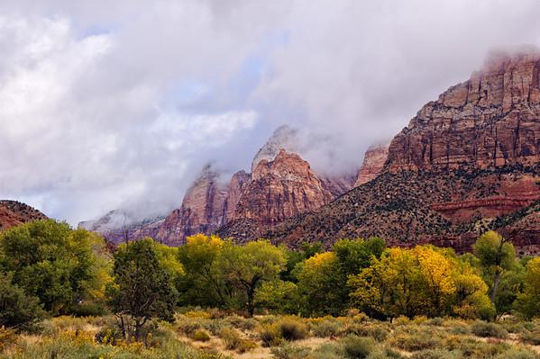 Autum in Zion National Park - Utah