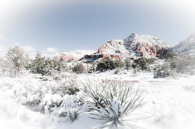 Red rocks and snow