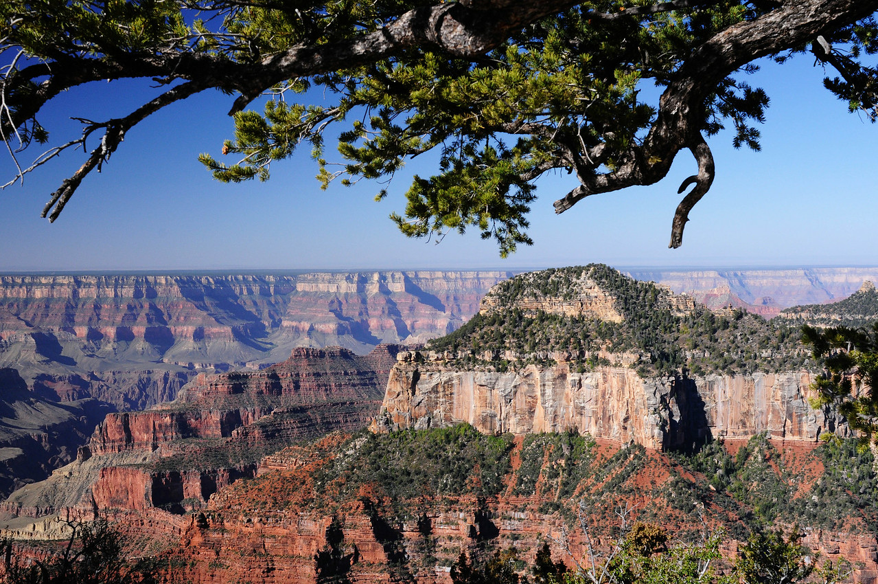 Grand Canyon From Bright Angel Point, North Rim