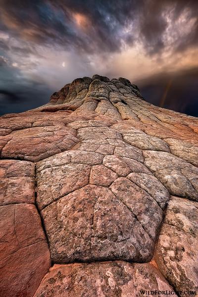 """Cretaceous Easter"" - Arizona"