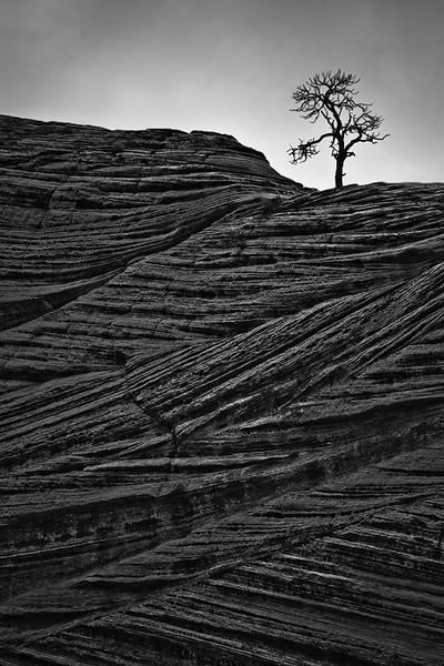 """Lines of Time""  - Utah"