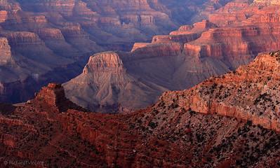 Grand Canyon Evening