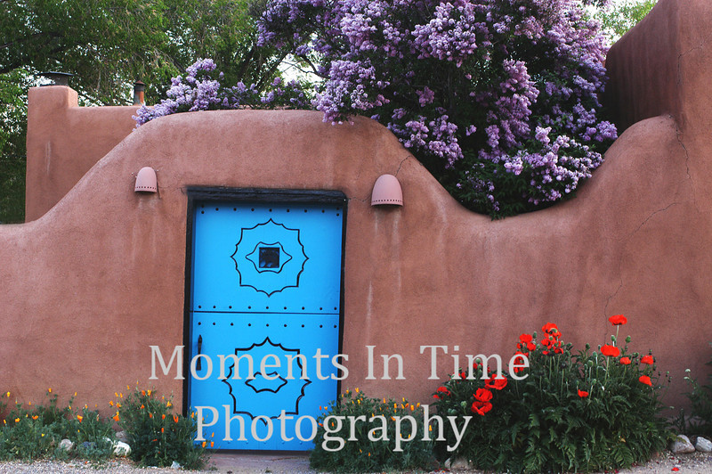 Poppies with blue door