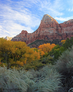Zion Morning
