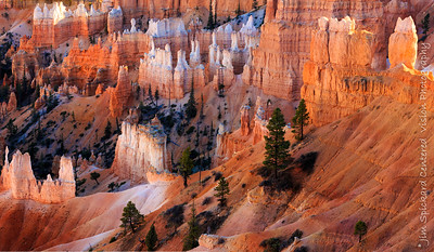 Bryce Canyon Amphitheater an Hour before Sunset