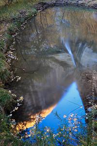 Calf Creek Falls, Reflected