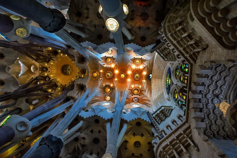 Ceiling - Sagrada Familia